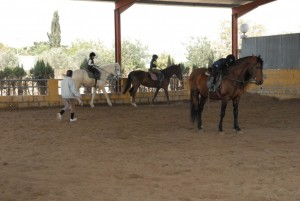 HorseExperience_ClubHipicoLosArabes